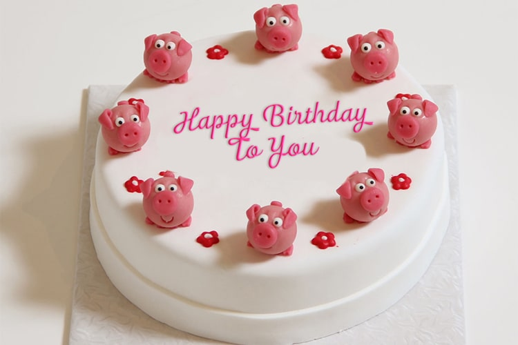 Write text  on birthday cake with funny pigs