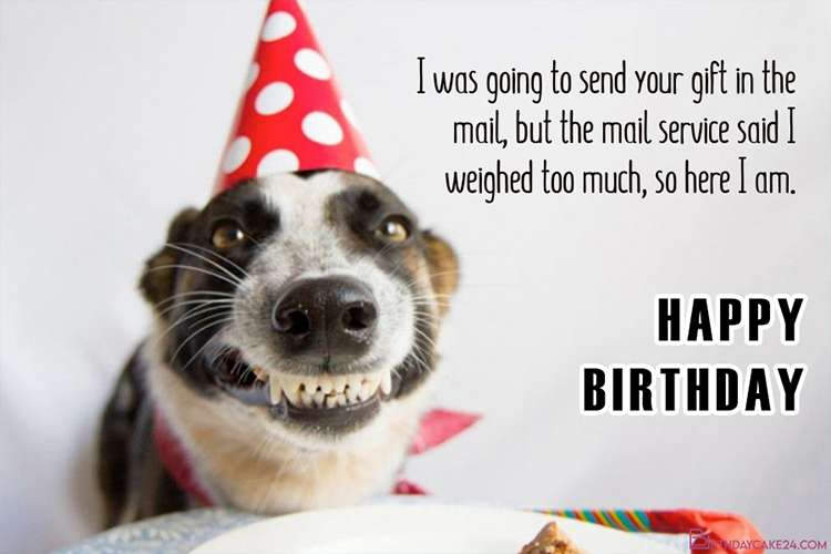 Best Happy Birthday Dog Meme Greeting Cards Images