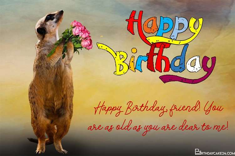 Create Funny Birthday Greeting Cards With Wishes