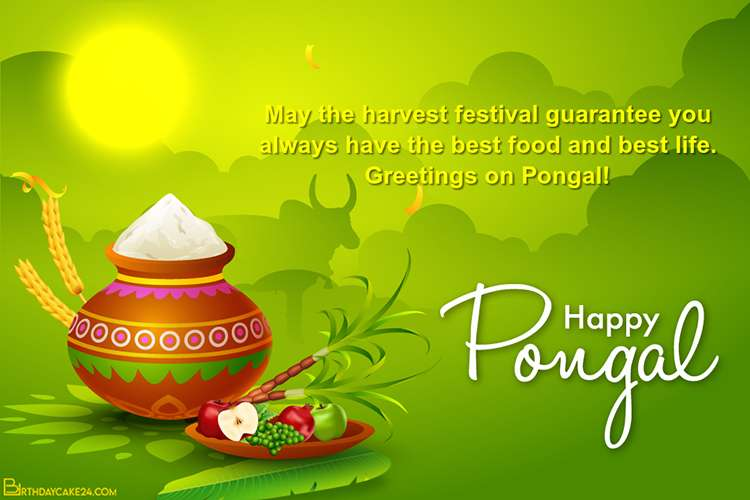 Happy Pongal Greetings Card Design Online Free