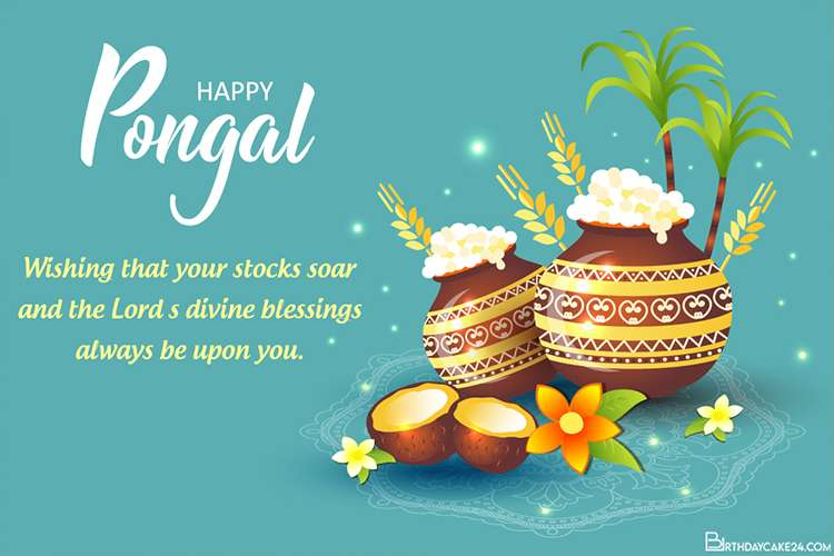 Happy Pongal Harvest Festival Greeting Cards